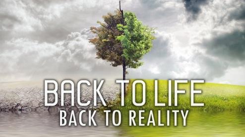back-to-life-final2-b5576501e76f1b68d25c004e015db11d